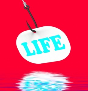 Life on a Hook-100264862-6
