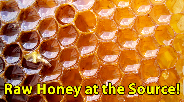 014_5 Top Reasons To Eat Raw Honey_720x400