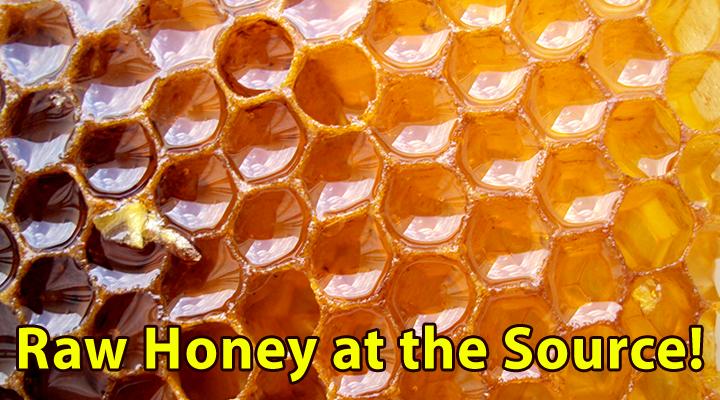 014_5 Top Reasons To Eat Raw Honey_720x400